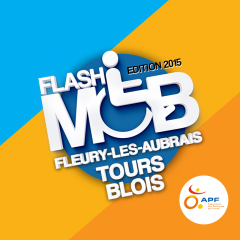 flash2015.png